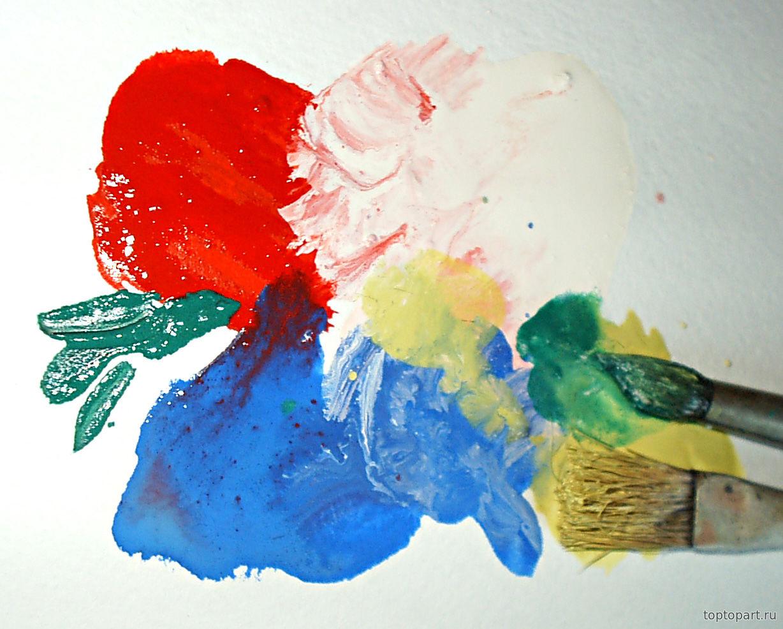 Поэтапное рисование домашних животных для детей 5-6 лет